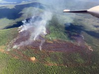 Caribou Creek Fire #255 on June 21