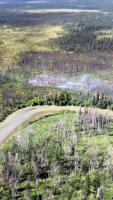 Division of Forestry Kenai-Kodiak Area firefighters and two helicopter are working hard to contain the Killey Fire (#413) burning near east of Browns Lake near Sterling on Sunday night. Photo by Division of Forestry