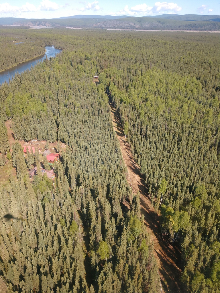 Aerial view of a fuelbreak in the Richardson Clearwater community. Photo by Maggie Demers, BLM Alaska Fire Service