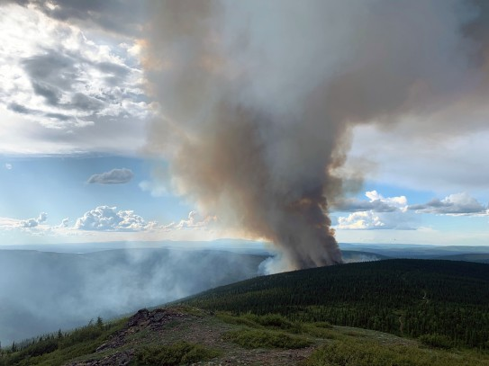 A photo of the smoke column from the Shovel Creek Fire burning 3 miles north of Muyrphy Dome.