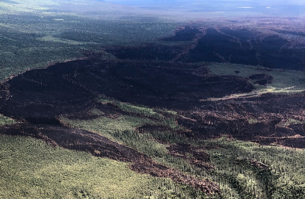Burned area shows black with green vegetation surrounding.