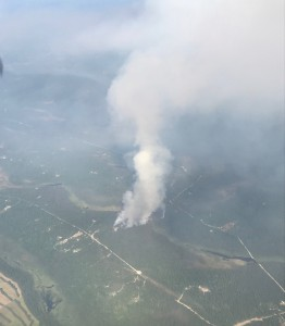 A photo of the Malaspina Fire (#451) as seen from the air on initial attack at 4:25 p.m. Photo by Tim Whitesell/Alaska Division of Forestry