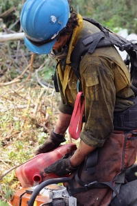 A member of the UAF Nanooks Wildland Fire Crew refuels a chainsaw on the west flank of the Malaspina Fire on Monday, July 8, 2019.