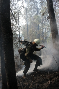 A member of the Fairbanks-based White Mountain Type 2 Initial Attack Crew carries a chainsaw up a smoldering hill on the Malaspina Fire on Monday, July 8, 2019. Photo by Mike McMillan/Alaska Division of Forestry