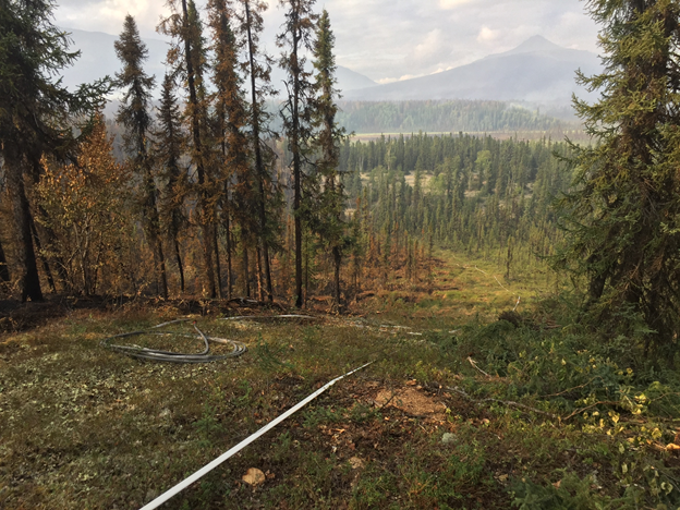 Firefighters constructed this firebreak on Jim Magdanz and Susan Georgette's property, by burning on the left of the saw line. Jim and Kathi Dodson cabin in background. Looking north at Uman Mountain. Mauneluk River in right center. Both cabins were saved. Photo courtesy Jim Magdanz