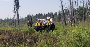 A squad of firefighters from Mat-Su Area Forestry walk into the M.L.K. Fire to begin mop up operations on Wednesday morning, July 3, 2019. Photo by Stephanie Bishop/Alaska Division of Forestry