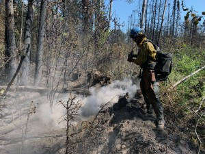 Firefighter Adam Paskvan of the UAF Nanooks Wildland Fire Crew hoses down a hot spot on the Montana Creek Fire on Saturday, July 6, 2019. Photo by Josh Turnbow/UAF Nanooks Wildland Fire Crew