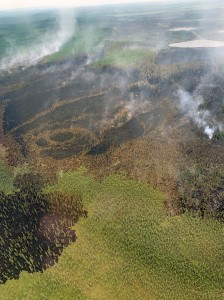 A photo of the Rainbow 2 Fire ataken at around 2 p.m. Monday, July 1, 2019 shows minimal fire behavior following water and BlazeTamer drops on Sunday. Photo by Mike Goyette/Alsaka Division of Forestry