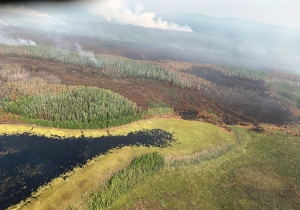 This photo of the Rainbow 2 Fire west of Delta illustrates the mosaic pattern the fire is producing, with areas of burned and unburned vegetation. Photo by Mike Goyette/Alaska Division of Forestry