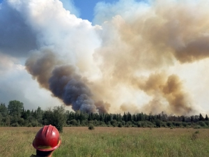 A firefighter watches smoke rise up from the Rainbow 2 Fire on Saturday, July 20, 2019 as the fire burns through pockets of unbruned black spruce in the interior of the fire. Photo by Thomas Grubs/Alaska Division of Forestry