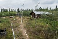 Sprinkler and hose line around a remote cabin in the Upper Yukon Zone.