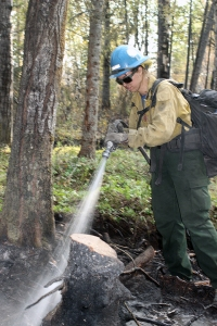 A member of the Prineville Hotshots sprays a hotspot on Deshka Landing Fire near Willow on Thursday, August 22. Photo by Mike McMillan/Alaska Division of Forestry