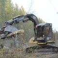 Removal of trees along the Parks Highway corridor. Photo credit: Mike McMillian