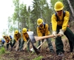 File photo of emergency firefighter candidates digging line during rookie training in the spring of 2018.