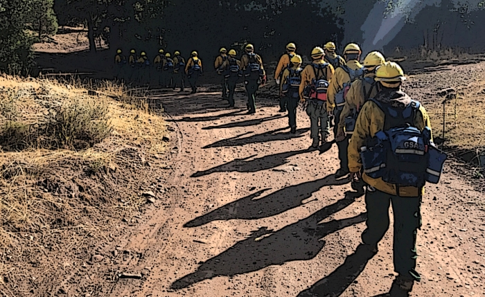 Firefighters lined up and walk a dirt road.