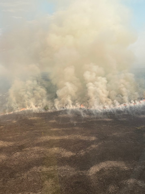 Photo of Clear Creek Fire on June 1, 2020.