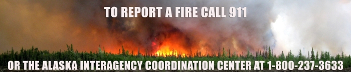 Graphic for reporting fire.