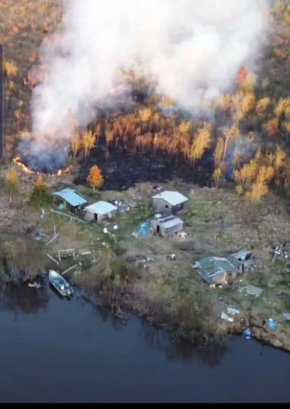 Smoke rising from the woods next to a fish camp prior to the fire burning multiple structures in the fish camp.