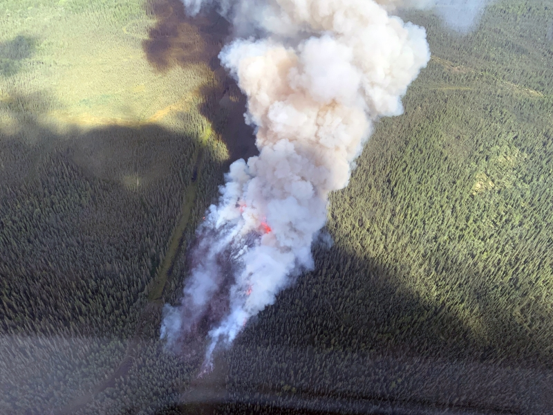 A large smoke column rising from a wildfire in the forest.