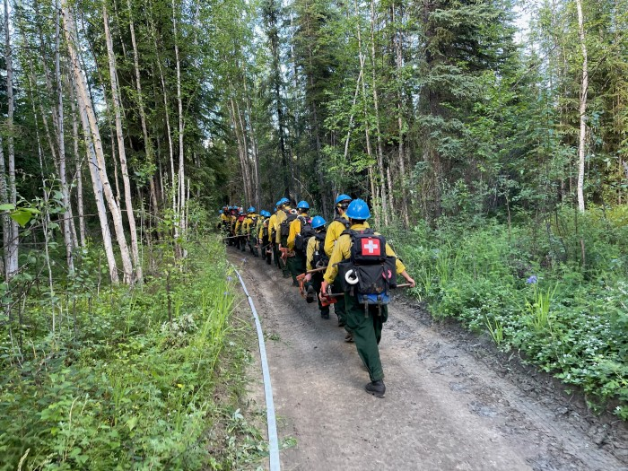 Firefighters wearing blue helmets marching single file into the woods.