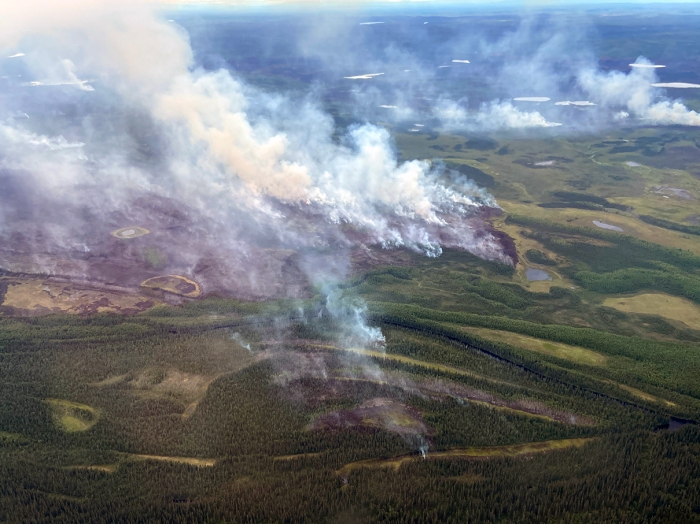 Smoke billowing up from green forests and tundra dotted with lakes.