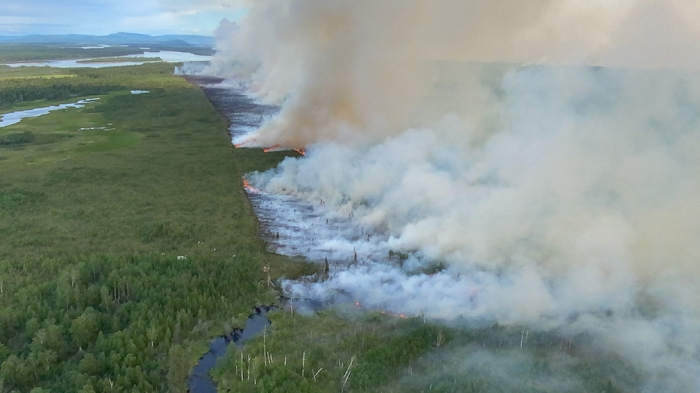 Smoke rising from a burn operation on forested land.