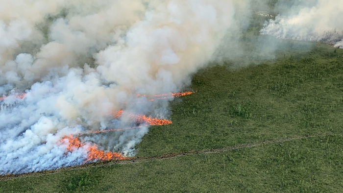Smoke rises up from lines of fire in a forested landscape.