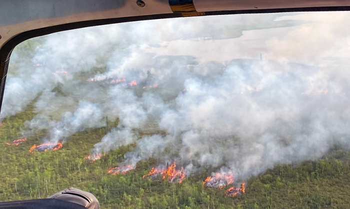 Smoke rises up from round patches of fire in a forest.