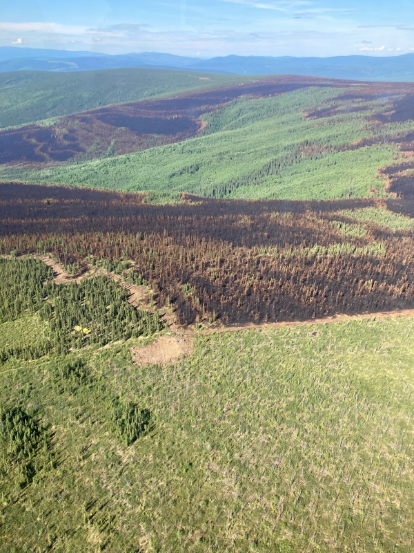 This image shows where the Haystack Fire stopped its spread at the edge of the 1999 Frost Fire prescribed burn.
