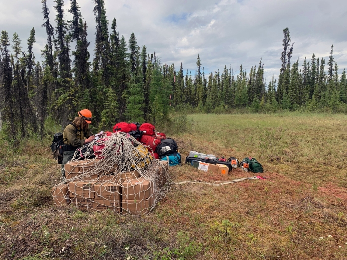 A member of the BLM Alaska Fire Service Northstar Fire Crew unties a sling load of supplies that was dropped by helicopter for firefighters working on the Rosie Creek Fire (#174) on Saturday, June 12, 2021.