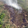 An aerial photo of the Salcha River Fire (#169) taken at around 3 p.m. on Thursday. If you look closely you can see the hose lay around the fire in the bottom right corner. Matt Nunnelly/Division of Forestry