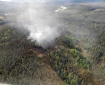 An aerial photo of the Salcha River Fire (#169) taken at around 3 p.m. on Thursday. The SaIcha River is visible in the background to the north. Matt Nunnelly/Division of Forestry