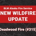 Graphic for update on a new wildfire.