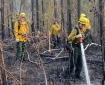 Local Crews Contain Lichen Fire at Mile 91