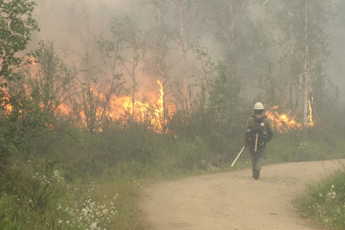 A White Mountain Crew member patrols a road being used as an anchor point for a backburn Monday night, July 5, 2021 at the Munson Creek Fire burning near Chena Hot Springs. Mike McMillan/Alaska DNR-Division of Forestry