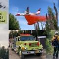 Lichen Fire Summary Video July 5th 2021