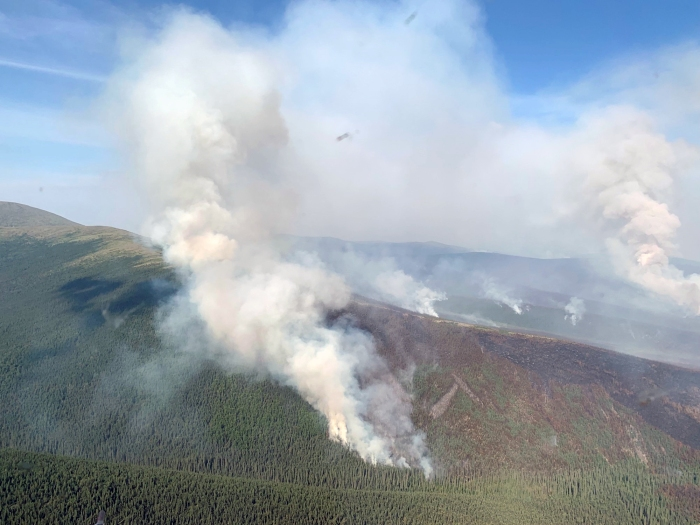 The Munson Creek Fire puts up a smoke column east of Chena Hot Springs on Monday, July 19, 2021.