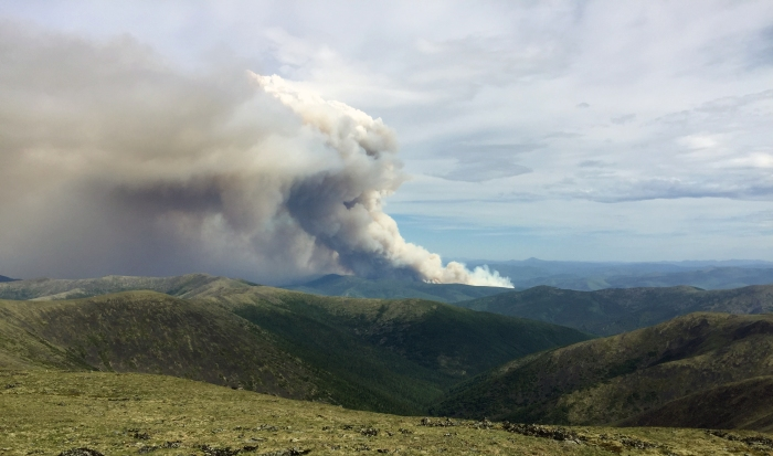 A smoke column from a wildfire in the distance taken atop Chena Dome.