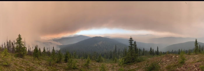 Smoke and sun seen from a ridgetop behind Chena Hot Springs.
