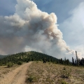 A large column of smoke rising from a wildfire as seen from a ridgetop behind Chena Hot Springs.