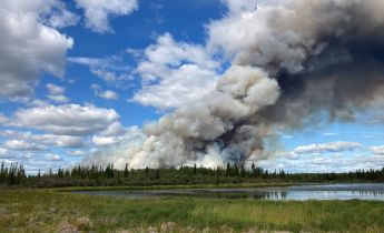 Large plume of smoke billowing from a forest in back of a pond.