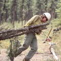 A firefighter dragging freshly cut trees.