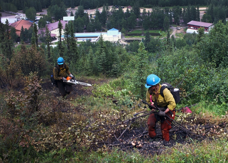 Firefighters cut trees and brush to build a containment line on a hillside above Chena Hot Springs Resort on Wednesday, July 7. The hot springs is visible in the background.