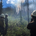 Three firefighters standing in the woods watching smoke.