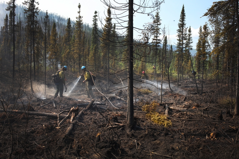 Firefighters spray hot spots while mopping up a burn operation on the Munson Creek Fire.