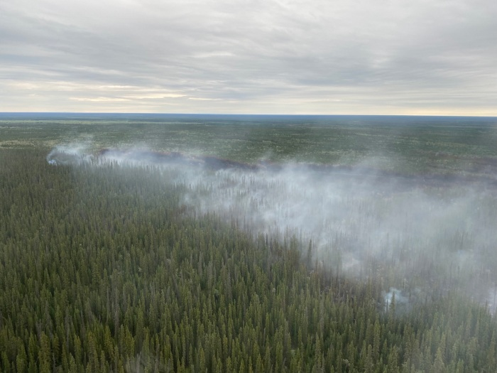 Smoke drifting up from forest fire.