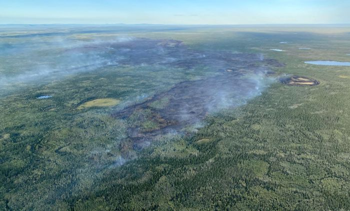 Smoke drifting up from edges of a burned area.